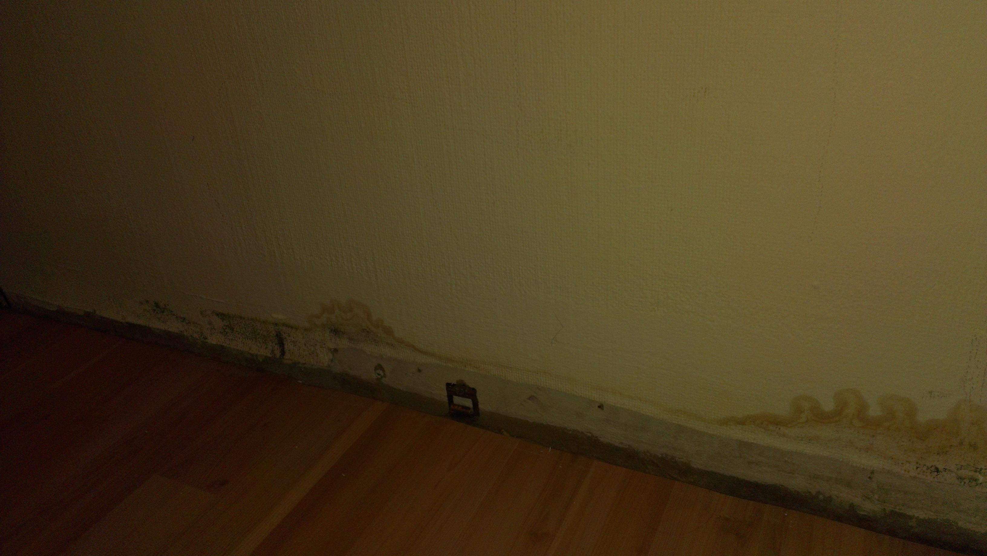 How i lose my flat Oder Wie einfach es ist, seine Wohnung zu ...